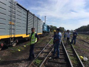 trenes argentinos3