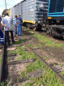 trenes argentinos6