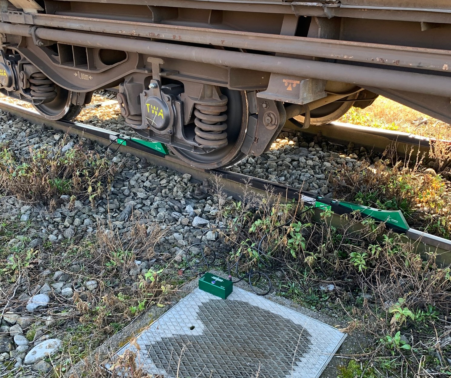 Static train weighing system - green side